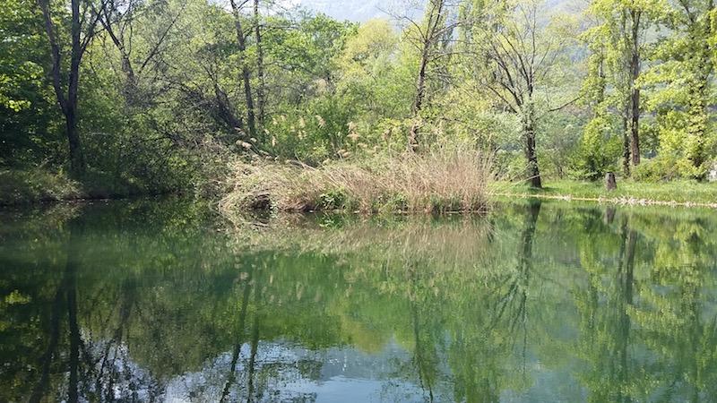 l'étang des Bauches