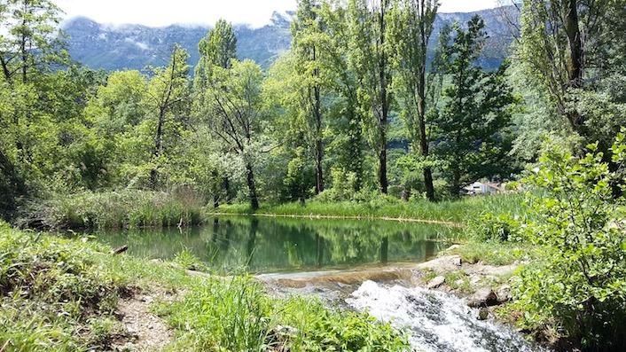 le petit étang des Bauches